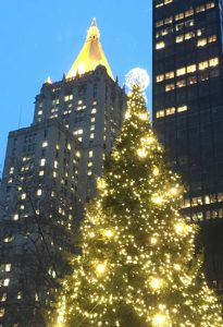 Madison Square Park Christmas tree